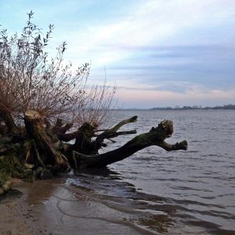 Elbstrand am Rissener Ufer