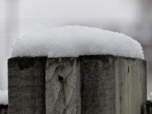 Schneerest