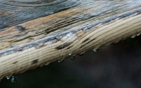 Holztropfen