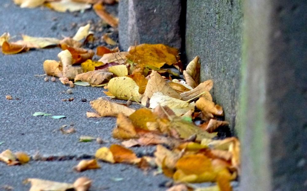 Blätterhäufchen