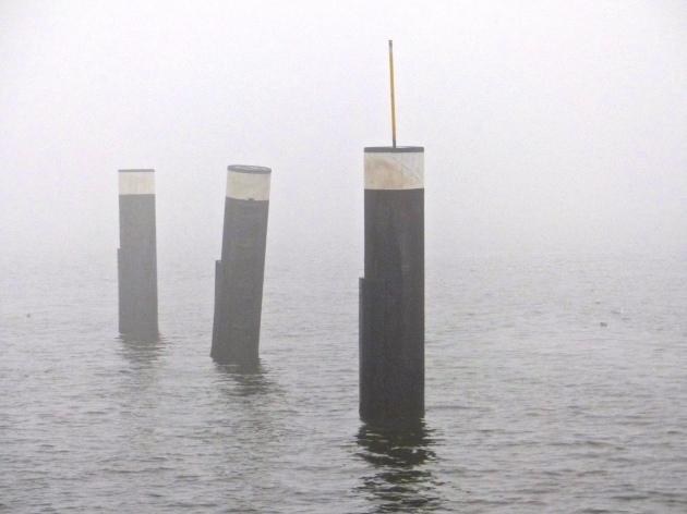 Nebelpfähle