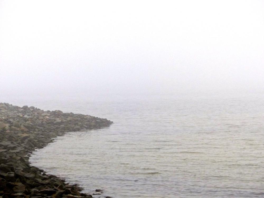 Nebelküste