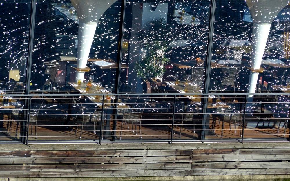 Fensterwassersterne