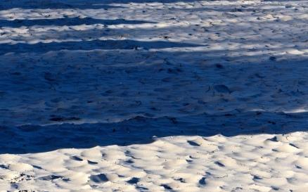 Strandschatten