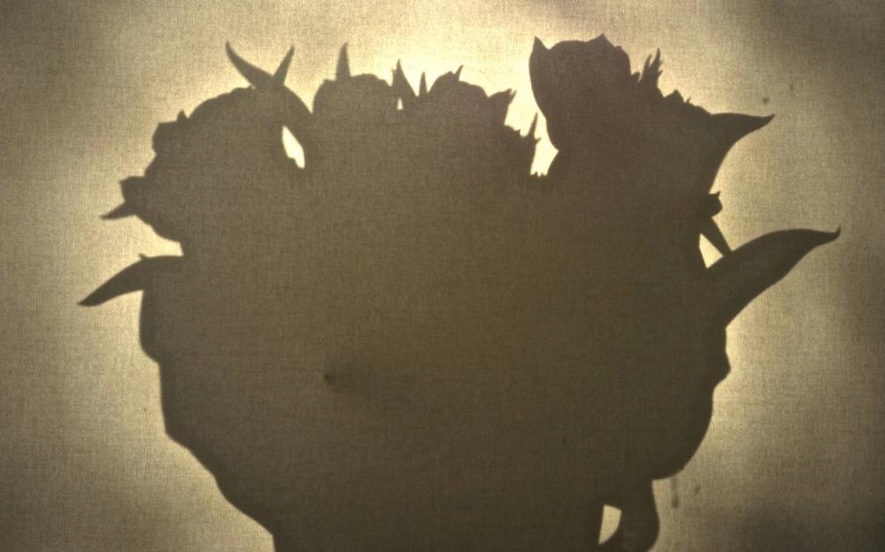 Licht & Schatten 3