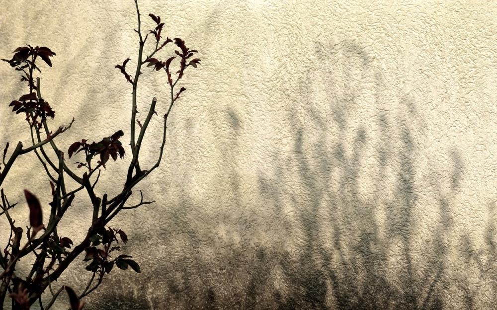 Licht & Schatten 5