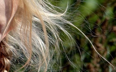 Wehendes Haar