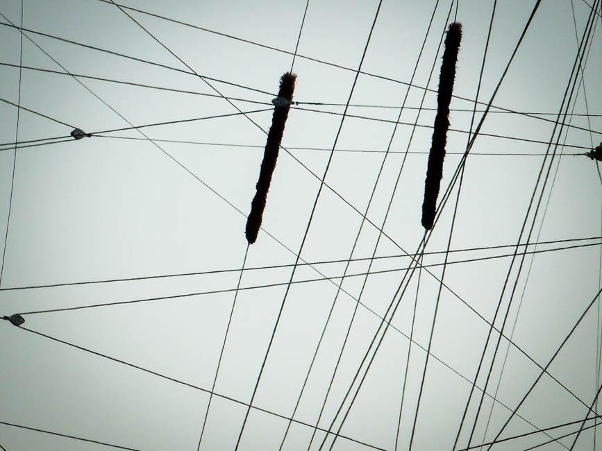 Mit dem Wind 9