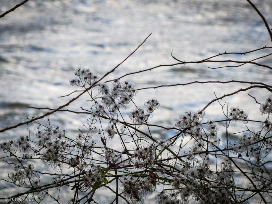 winterelbe-8