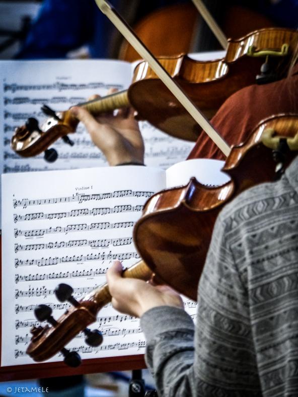musiker-6