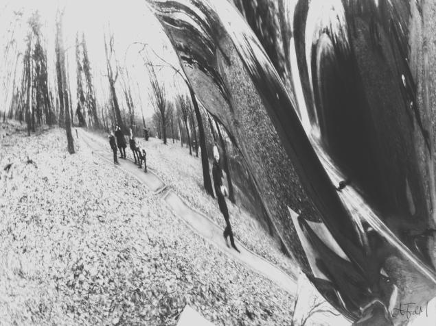 Wunderwald 4